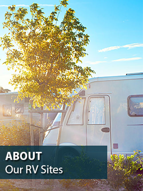 Sunshine-Village-RV-Sites